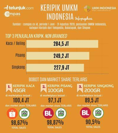 infografis penjualan keripik non branded